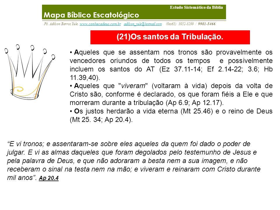 (21)Os santos da Tribulação.