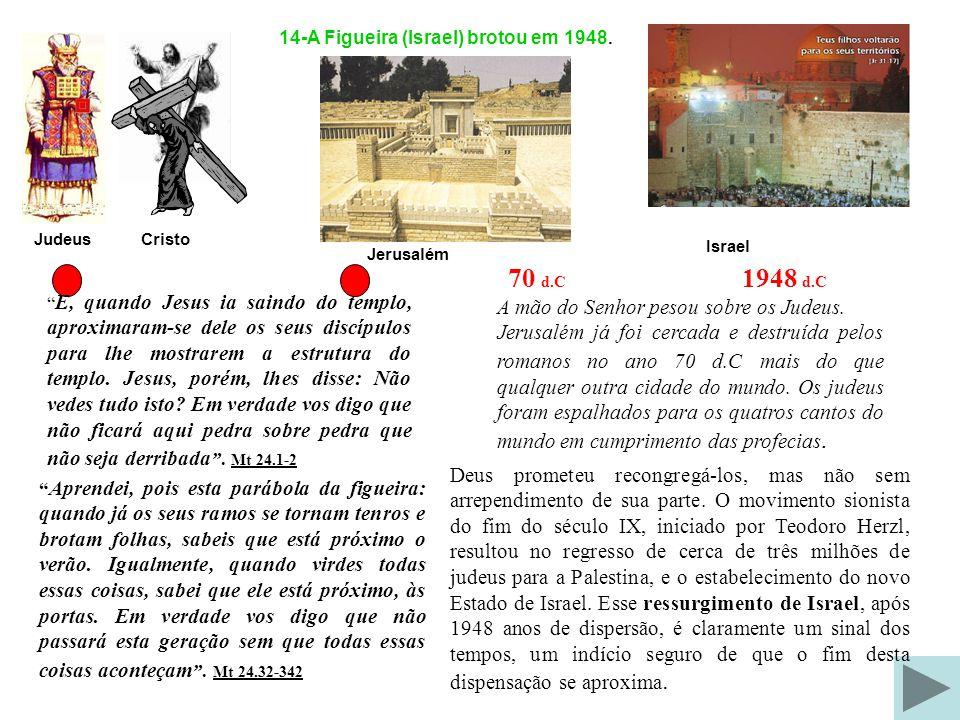 14-A Figueira (Israel) brotou em 1948.
