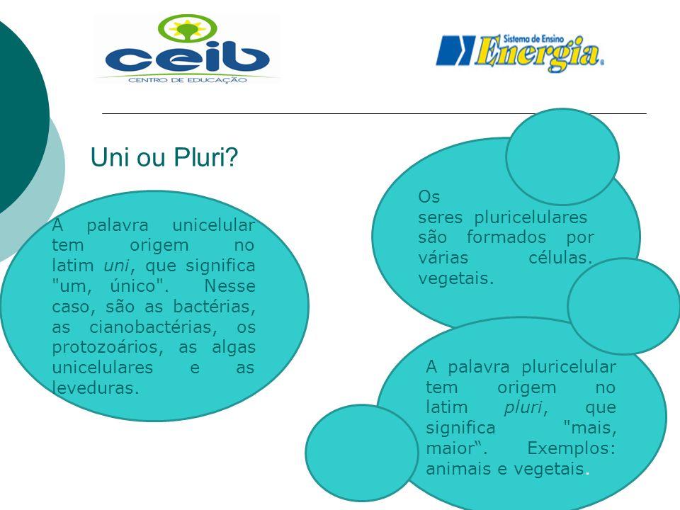 Uni ou Pluri Os seres pluricelulares são formados por várias células. vegetais.