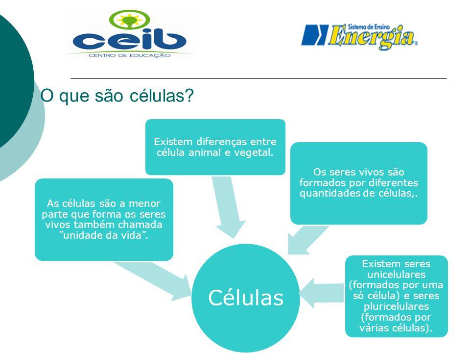 Células O que são células