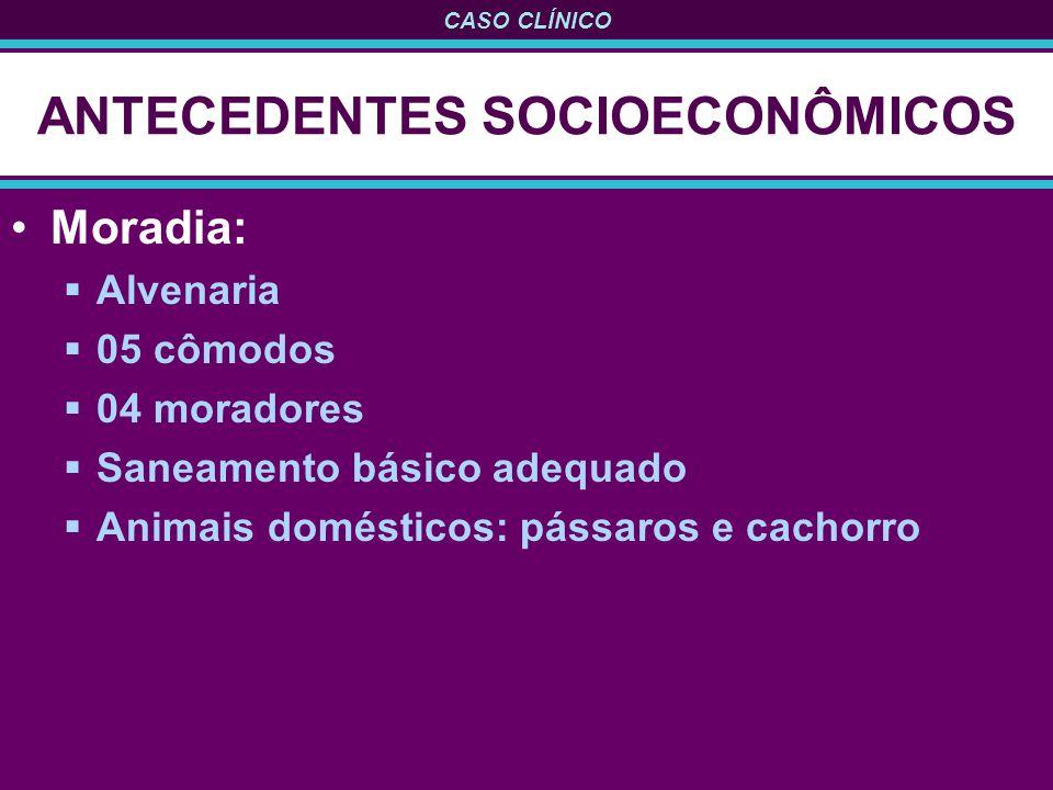 ANTECEDENTES SOCIOECONÔMICOS