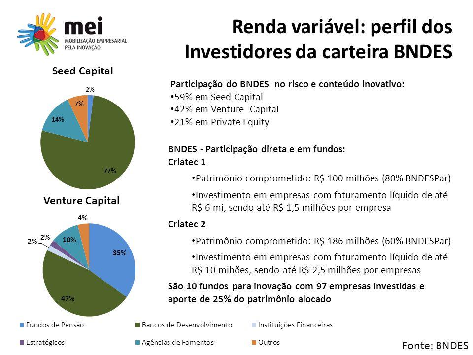 Renda variável: perfil dos Investidores da carteira BNDES