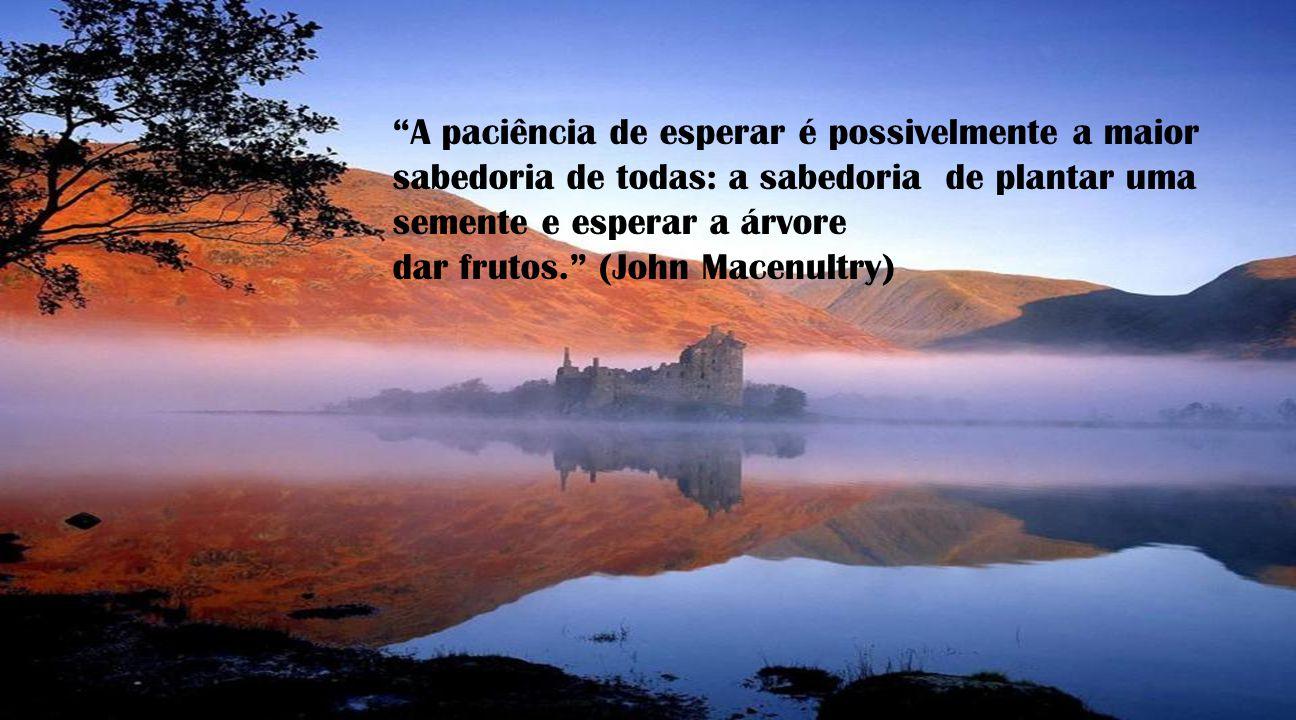A paciência de esperar é possivelmente a maior sabedoria de todas: a sabedoria de plantar uma semente e esperar a árvore