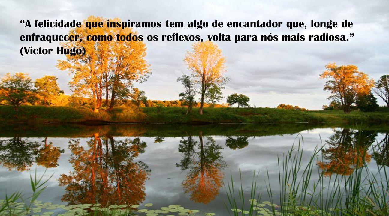 A felicidade que inspiramos tem algo de encantador que, longe de enfraquecer, como todos os reflexos, volta para nós mais radiosa. (Victor Hugo)