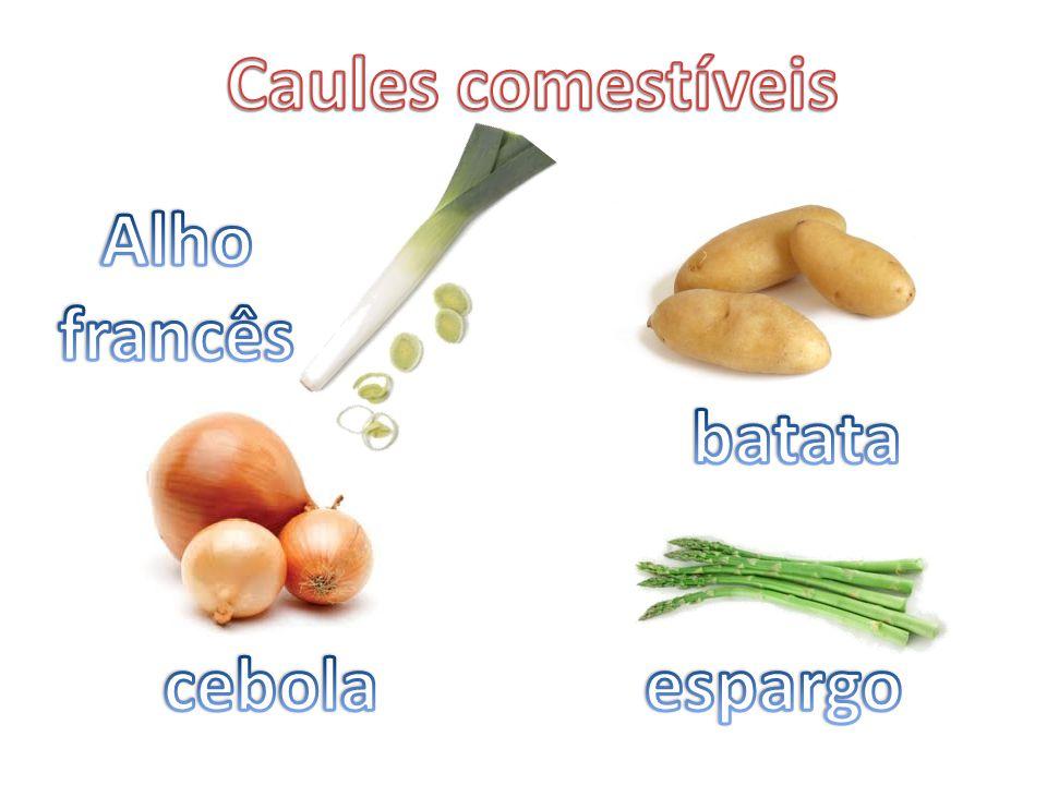 Caules comestíveis Alho francês batata cebola espargo