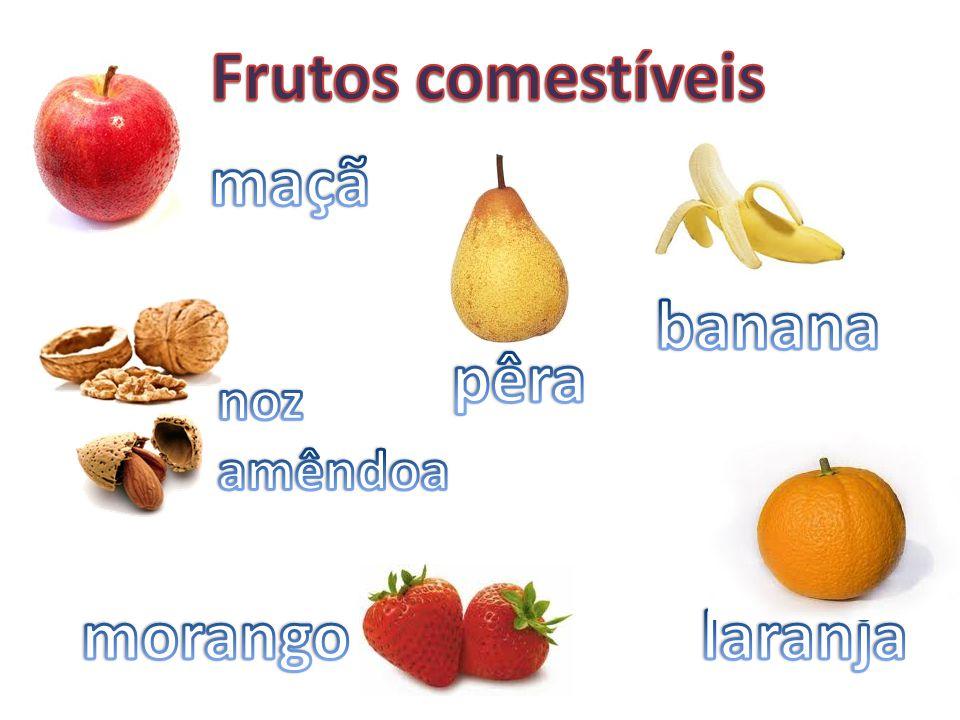 Frutos comestíveis maçã banana pêra morango laranja