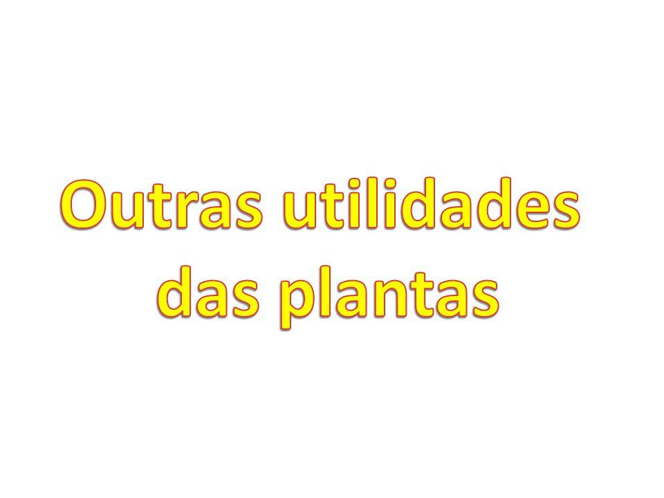 Outras utilidades das plantas