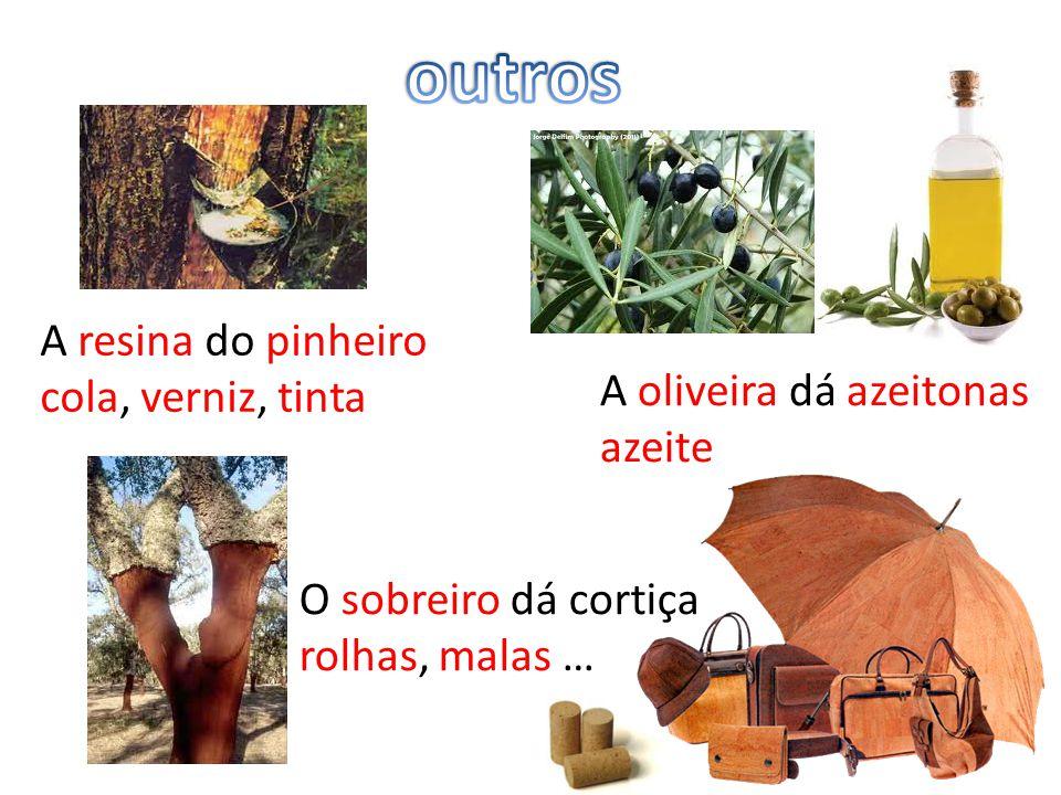 outros A resina do pinheiro cola, verniz, tinta