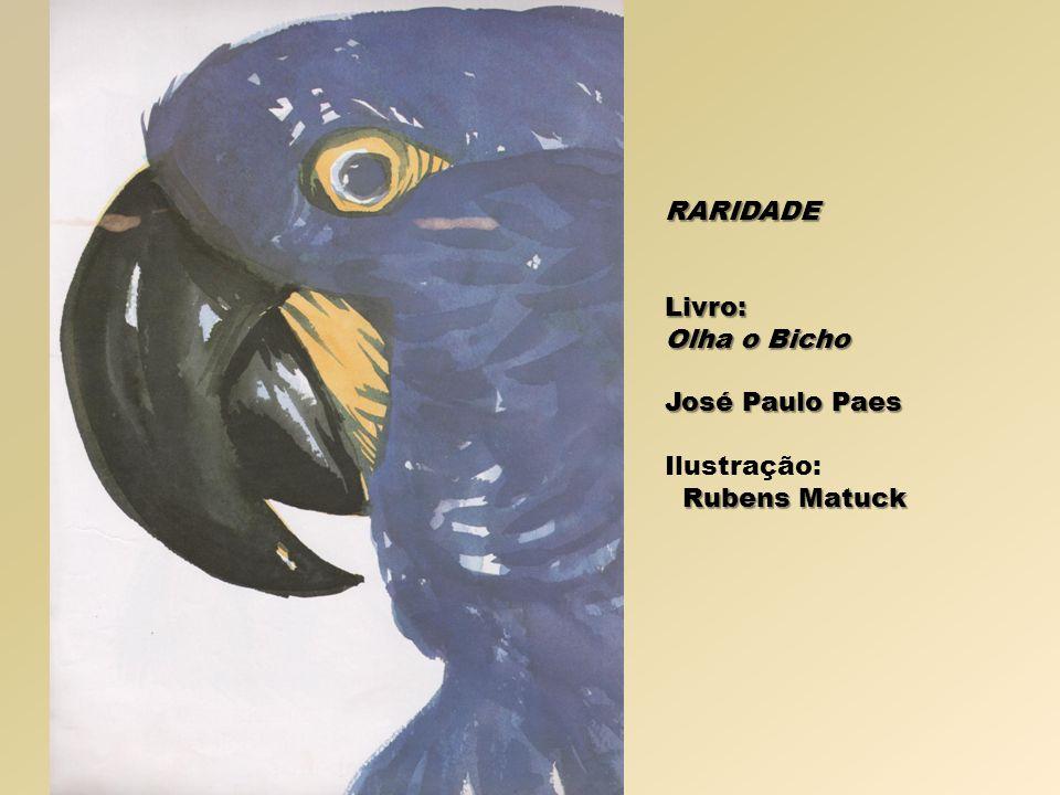 RARIDADE Livro: Olha o Bicho José Paulo Paes Ilustração: Rubens Matuck