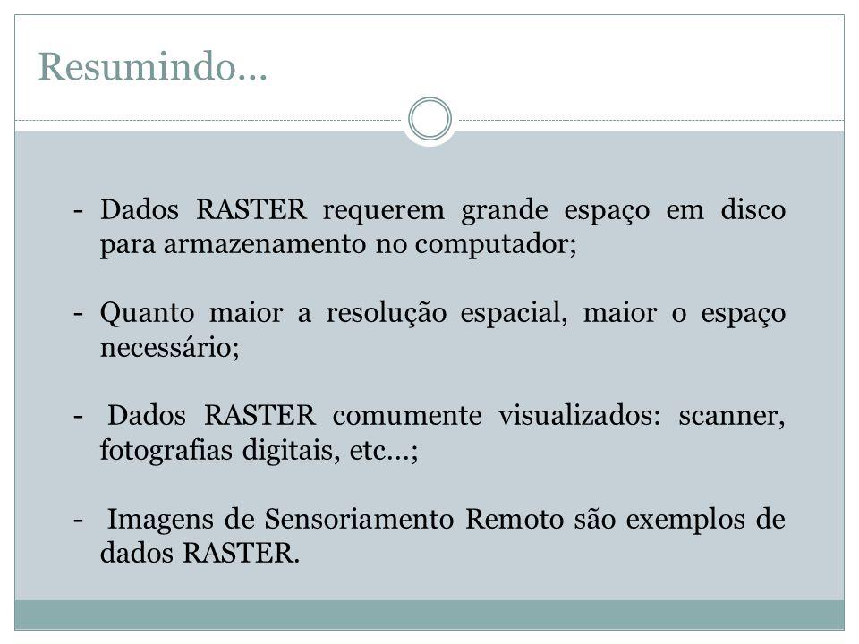 Resumindo... Dados RASTER requerem grande espaço em disco para armazenamento no computador;
