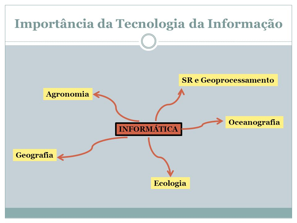 Importância da Tecnologia da Informação