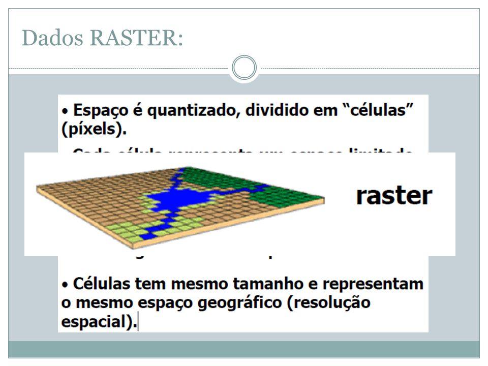 Dados RASTER: