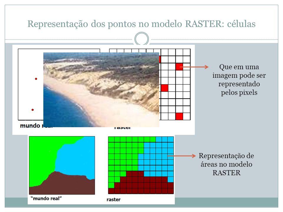 Representação dos pontos no modelo RASTER: células