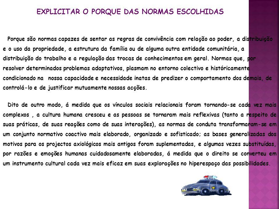 EXPLICITAR O PORQUE DAS NORMAS ESCOLHIDAS