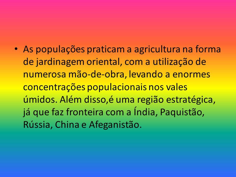 As populações praticam a agricultura na forma de jardinagem oriental, com a utilização de numerosa mão-de-obra, levando a enormes concentrações populacionais nos vales úmidos.
