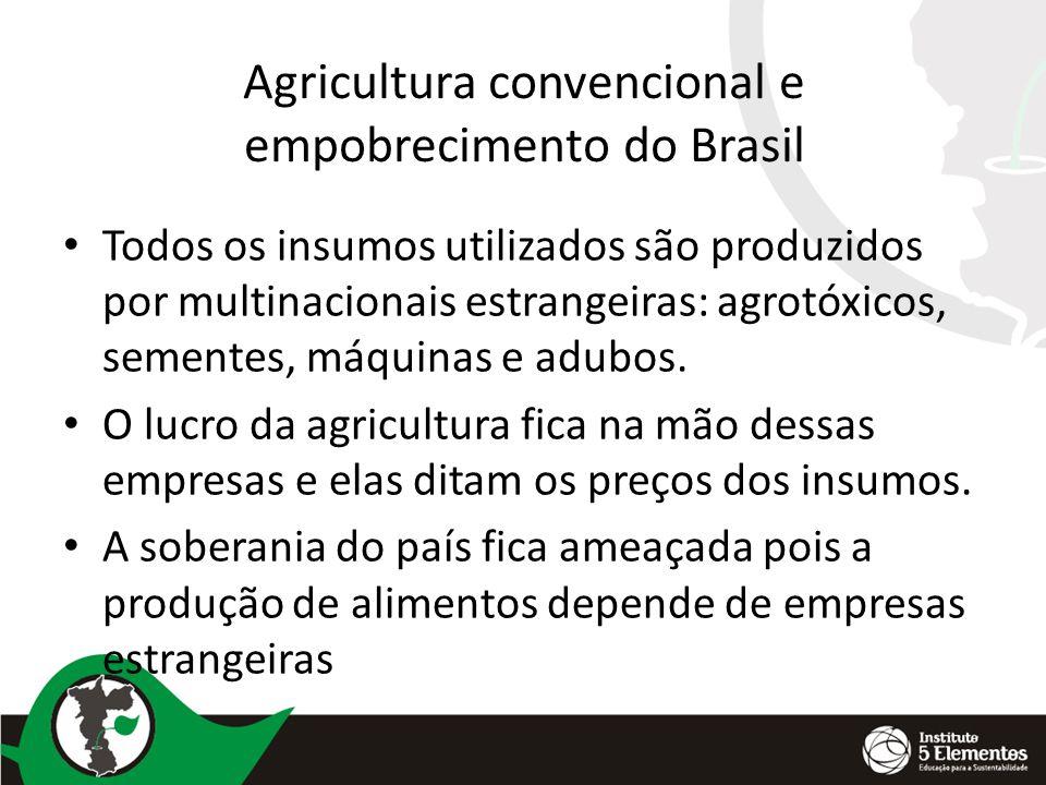 Agricultura convencional e empobrecimento do Brasil