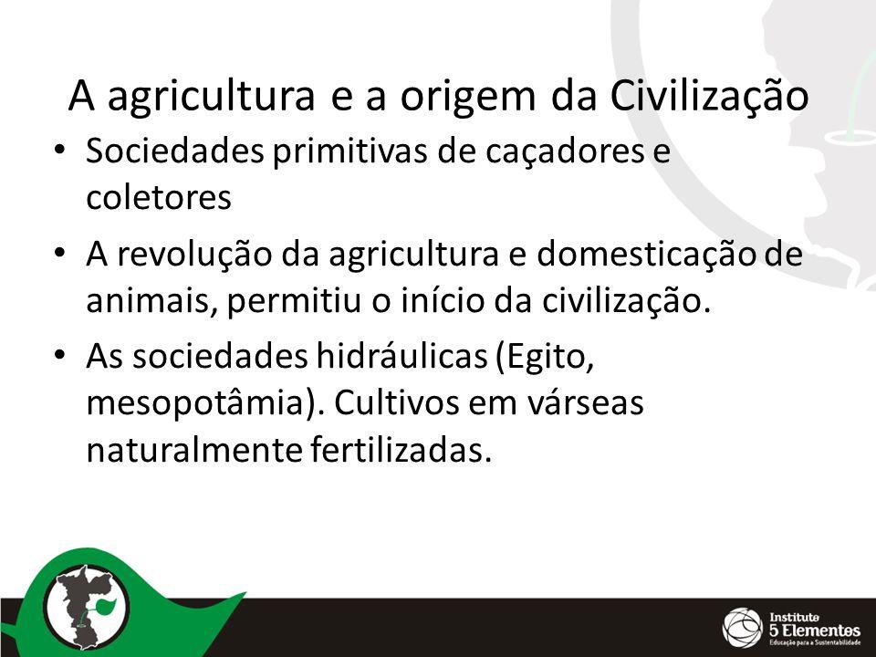 A agricultura e a origem da Civilização