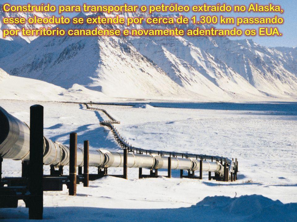 Construído para transportar o petróleo extraído no Alaska, esse oleoduto se extende por cerca de 1.300 km passando por território canadense e novamente adentrando os EUA.