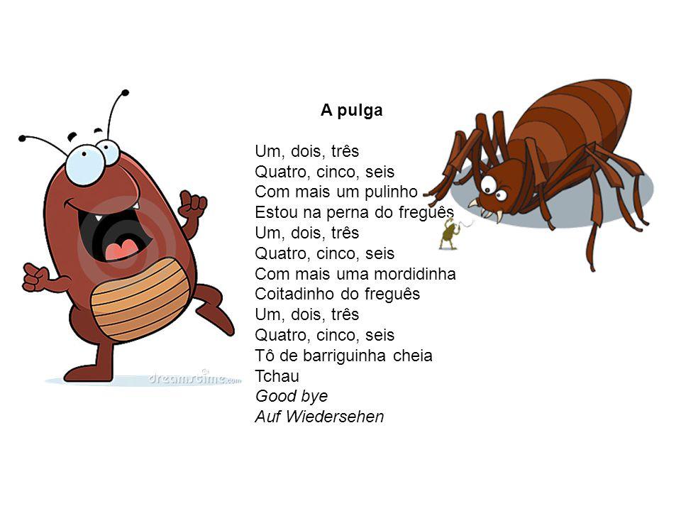 A pulga