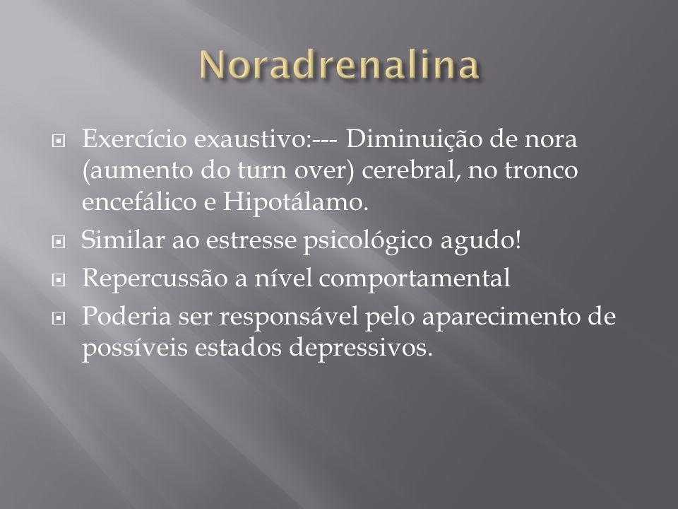Noradrenalina Exercício exaustivo:--- Diminuição de nora (aumento do turn over) cerebral, no tronco encefálico e Hipotálamo.