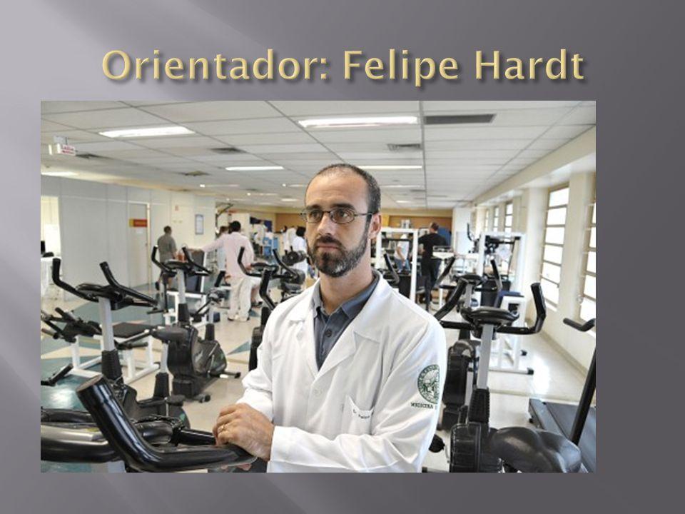 Orientador: Felipe Hardt