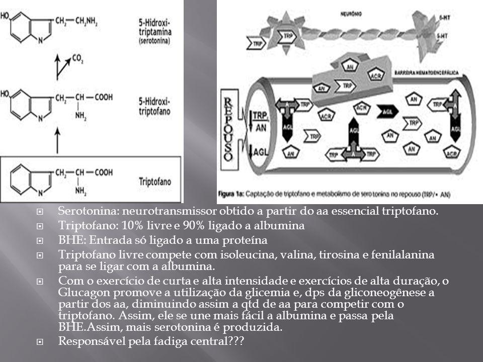 Serotonina: neurotransmissor obtido a partir do aa essencial triptofano.
