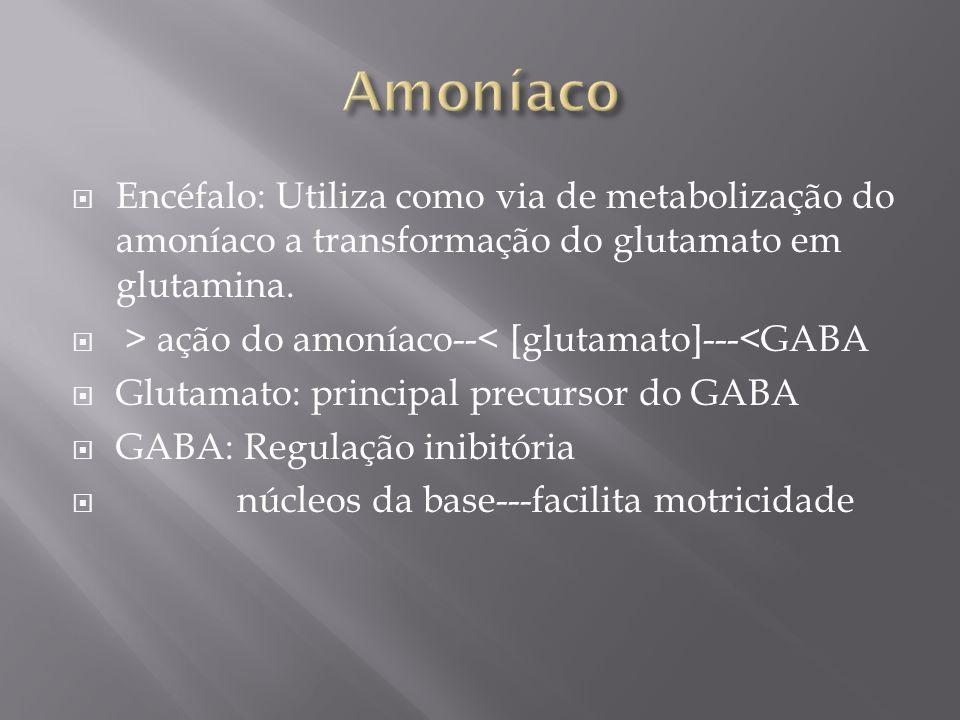 Amoníaco Encéfalo: Utiliza como via de metabolização do amoníaco a transformação do glutamato em glutamina.