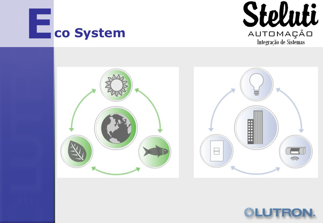 E co System