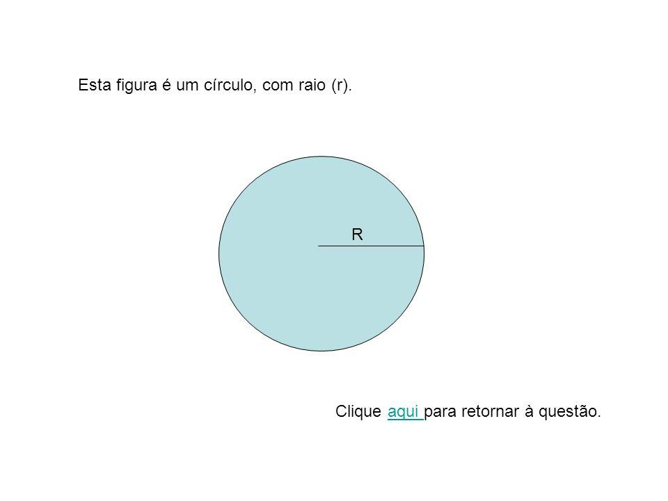 Esta figura é um círculo, com raio (r).