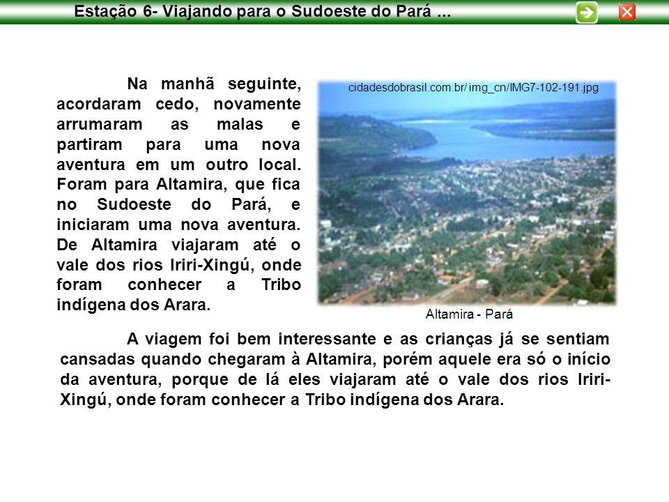 Estação 6- Viajando para o Sudoeste do Pará ...