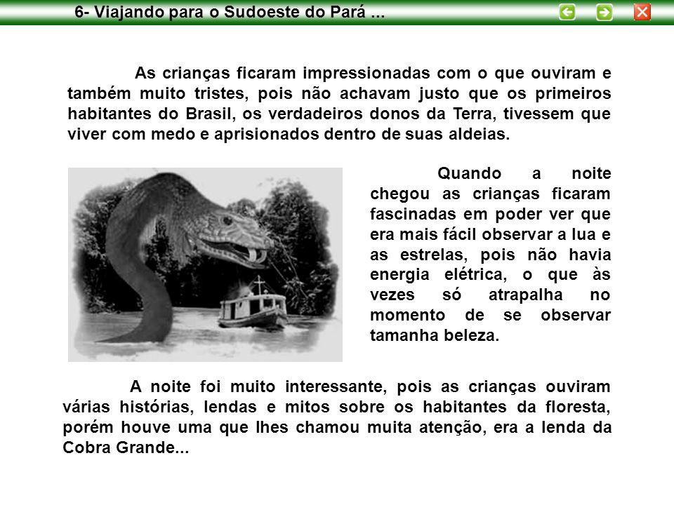 6- Viajando para o Sudoeste do Pará ...