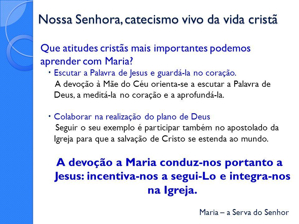 Nossa Senhora, catecismo vivo da vida cristã
