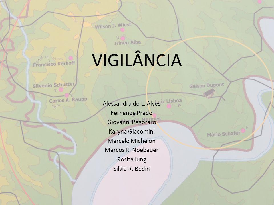 VIGILÂNCIA Alessandra de L. Alves Fernanda Prado Giovanni Pegoraro