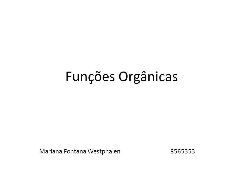 Mariana Fontana Westphalen 8565353