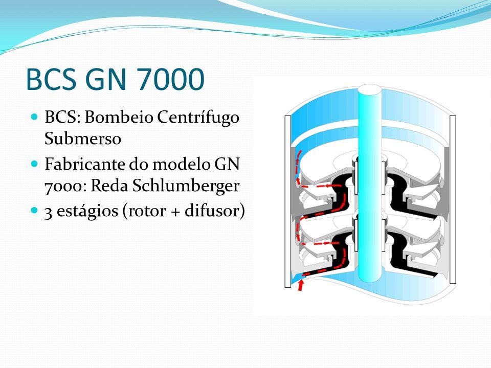 BCS GN 7000 BCS: Bombeio Centrífugo Submerso