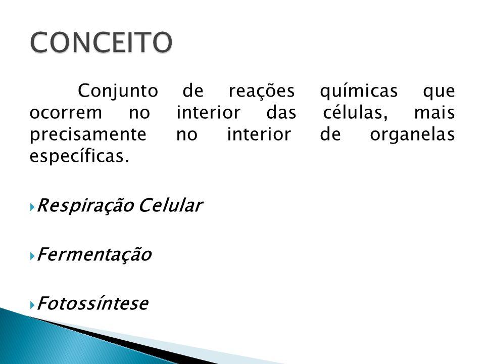 CONCEITO Conjunto de reações químicas que ocorrem no interior das células, mais precisamente no interior de organelas específicas.