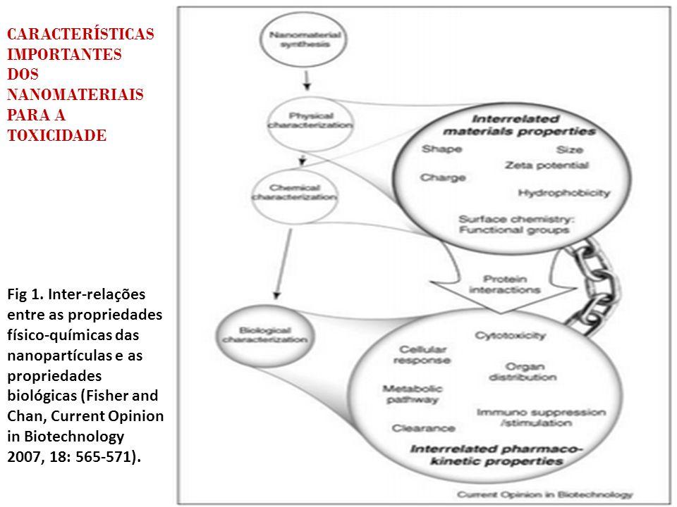 CARACTERÍSTICAS IMPORTANTES DOS NANOMATERIAIS PARA A TOXICIDADE