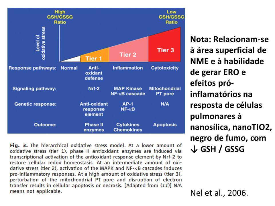 Nota: Relacionam-se à área superficial de NME e à habilidade de gerar ERO e efeitos pró-inflamatórios na resposta de células pulmonares à nanosílica, nanoTIO2, negro de fumo, com ↓ GSH / GSSG
