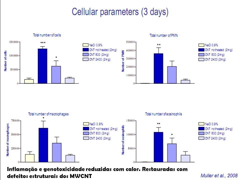 Inflamação e genotoxicidade reduzidas com calor