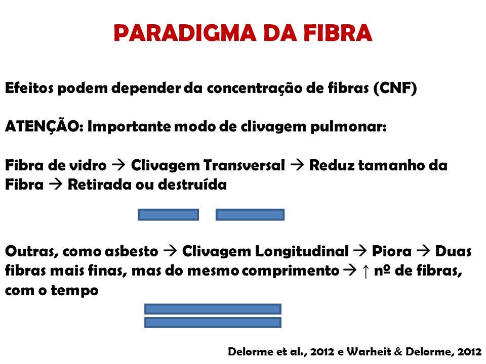 PARADIGMA DA FIBRA Efeitos podem depender da concentração de fibras (CNF) ATENÇÃO: Importante modo de clivagem pulmonar: