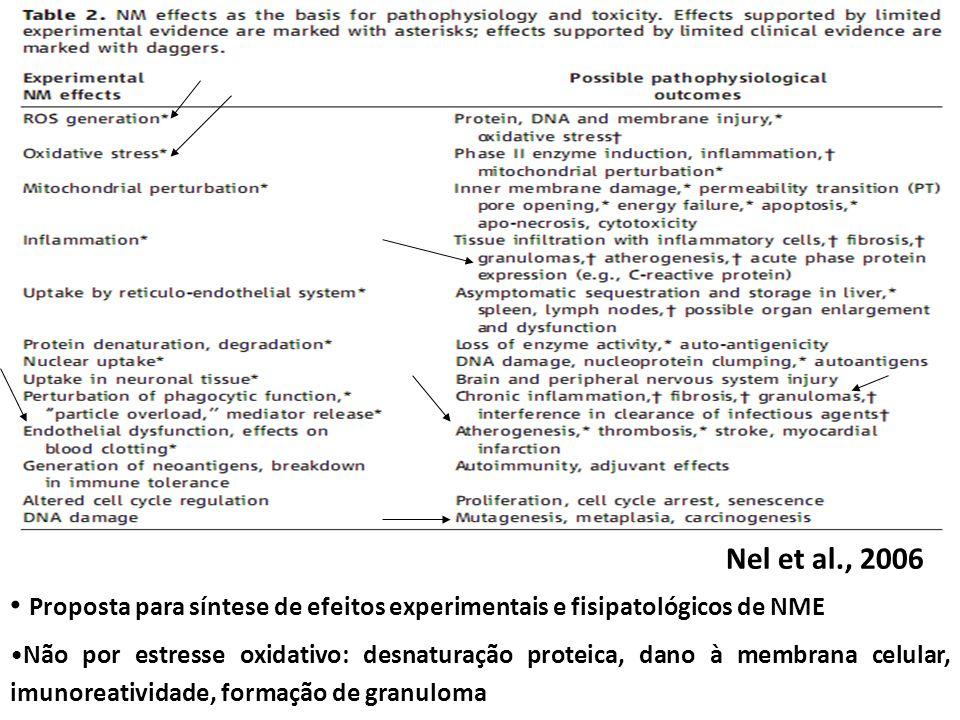 Nel et al., 2006 Proposta para síntese de efeitos experimentais e fisipatológicos de NME.