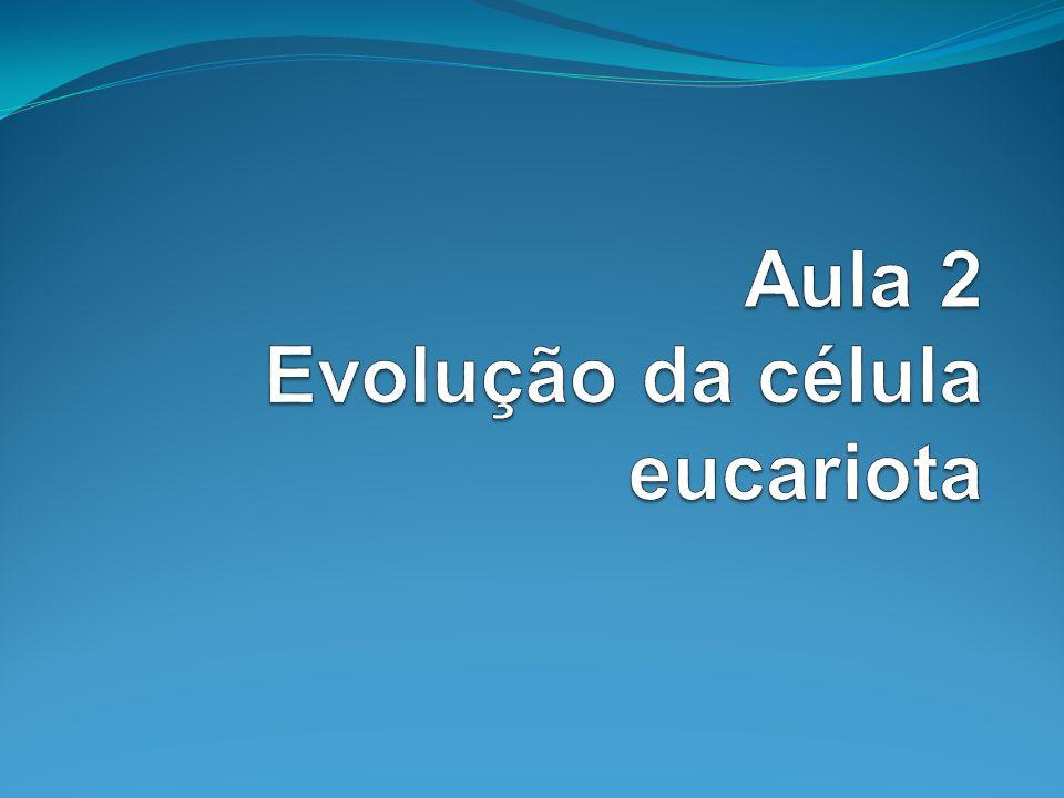 Aula 2 Evolução da célula eucariota