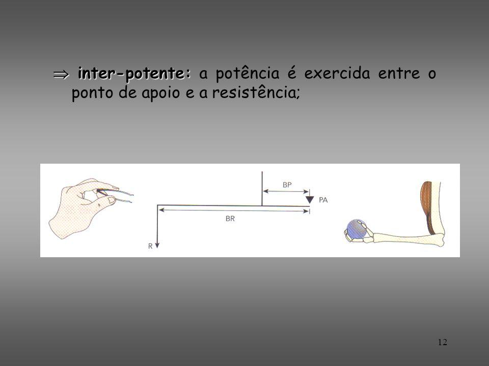  inter-potente: a potência é exercida entre o ponto de apoio e a resistência;
