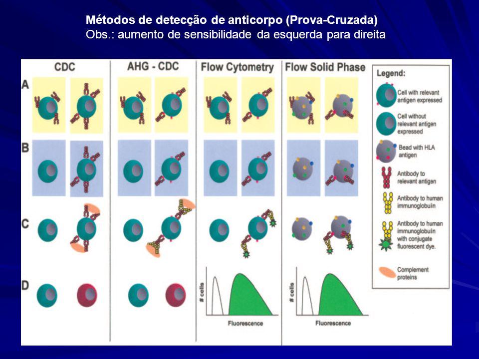 Métodos de detecção de anticorpo (Prova-Cruzada)