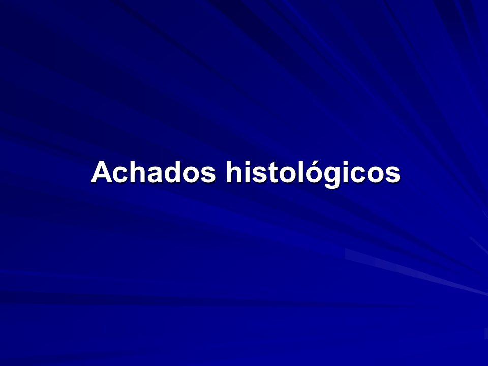 Achados histológicos