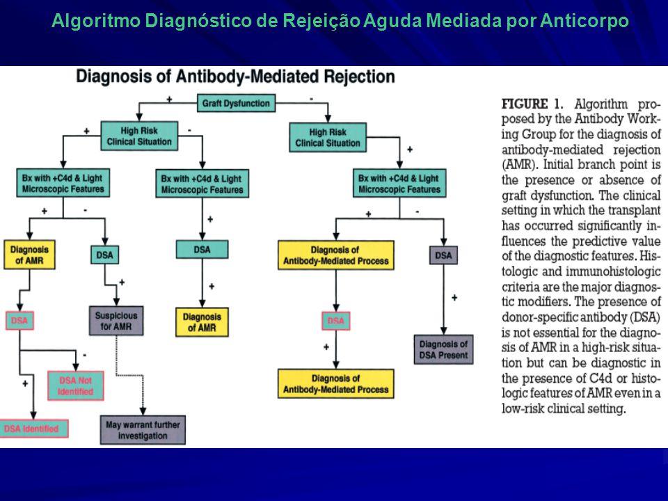 Algoritmo Diagnóstico de Rejeição Aguda Mediada por Anticorpo