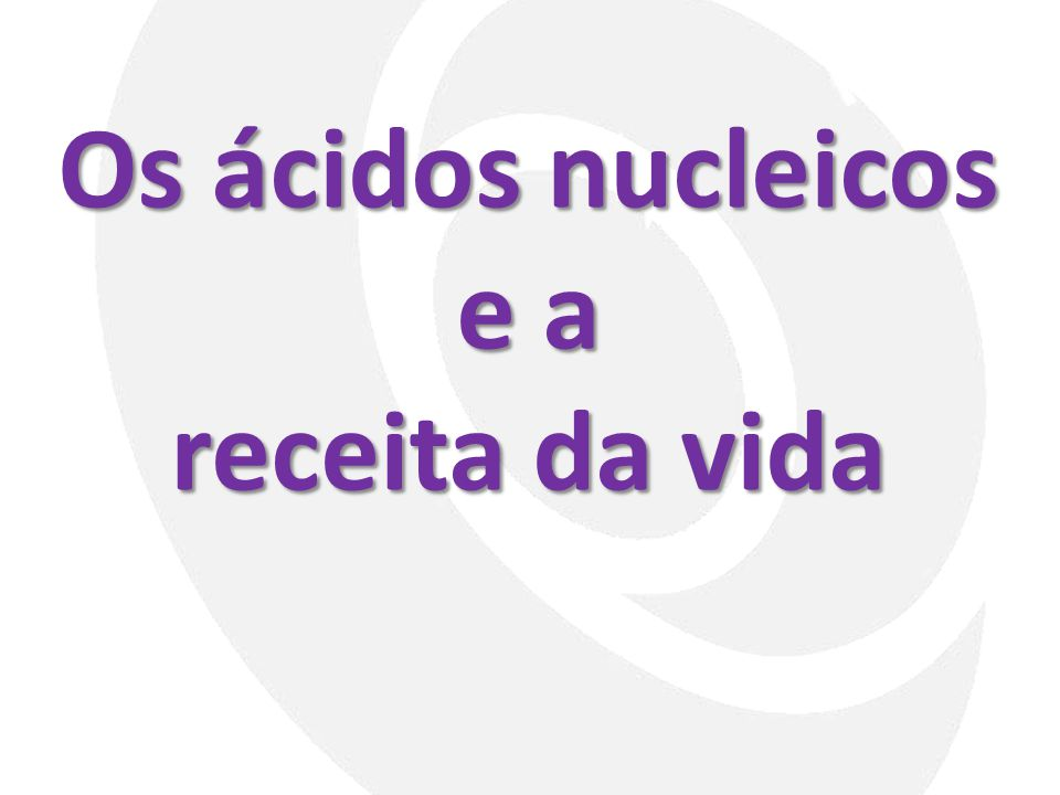 Os ácidos nucleicos e a receita da vida