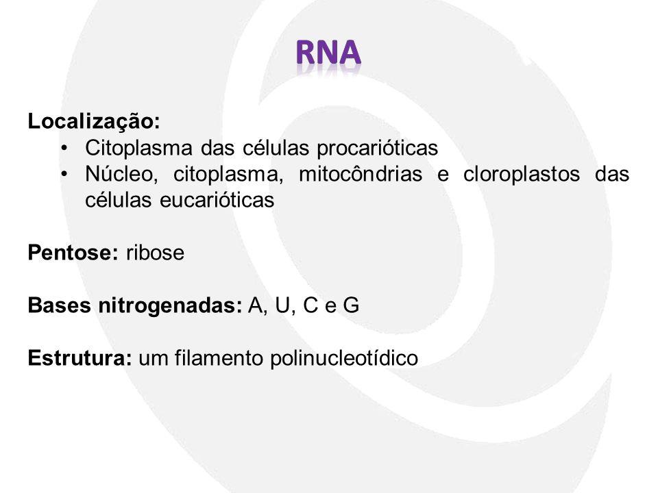 RNA Localização: Citoplasma das células procarióticas