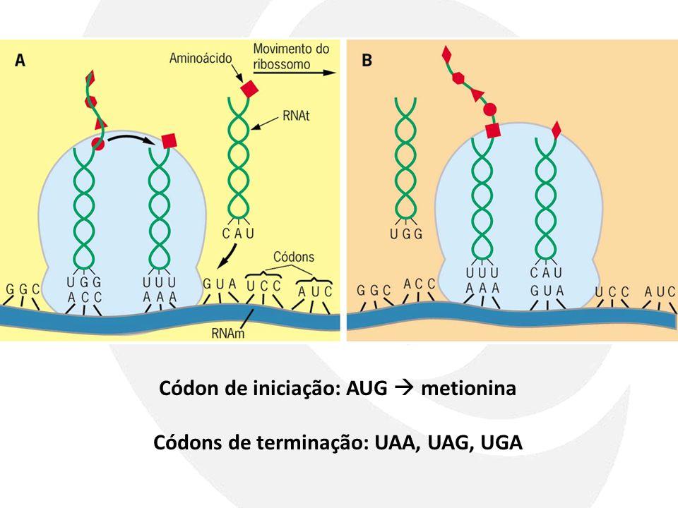 Códon de iniciação: AUG  metionina