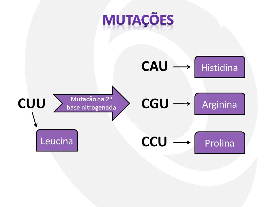 Mutação na 2ª base nitrogenada